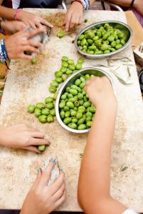 bd olive