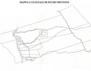 Mappa Catastale di Feudo Montoni
