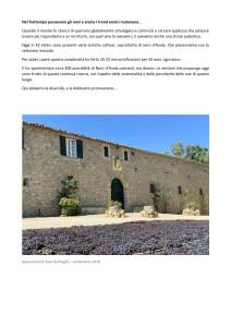 Il vignaiolo_page-0005